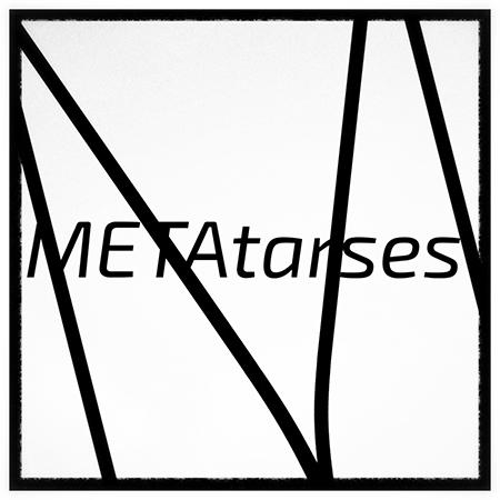 METAtarses